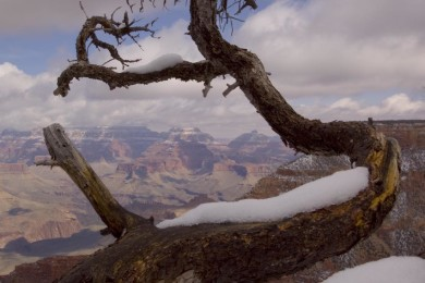 2008-3-SB-Grand-Canyon-161
