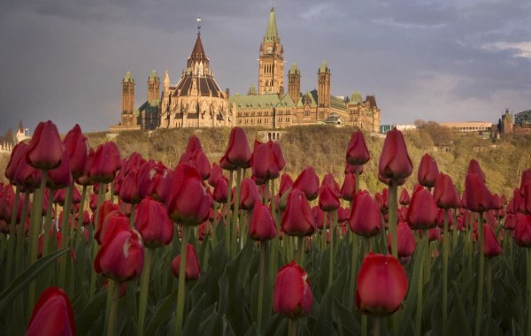 Photographs in Ottawa and Montreal